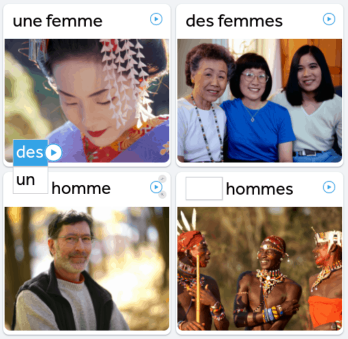 Rosetta-Stone-Product-Review-Test-Question-French