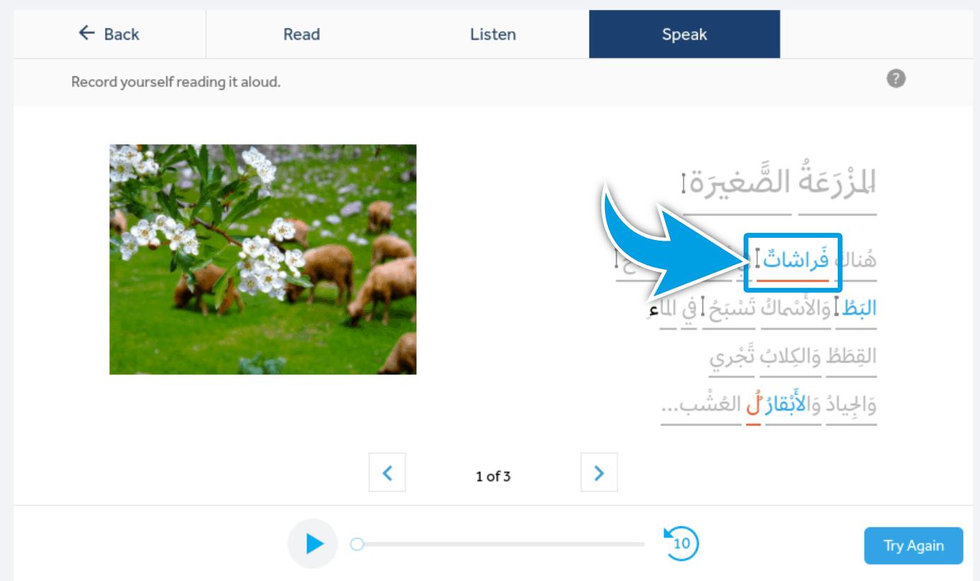 Rosetta-Stone-Product-Review-Book-Arabic