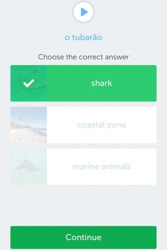 shark Busuu