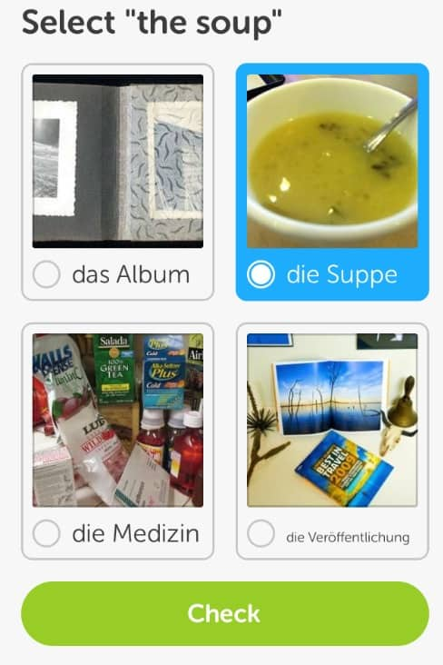 Duolingo soup